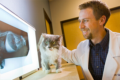 Dr. Scott Shuler